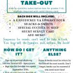 teen box subscription flyer